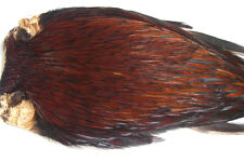 Cou coq Indien FURNACE montage mouche mosca fly tying rooster cock neck dry cape