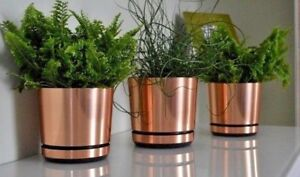 MODERN PLASTIC FLOWER PLANT POT SMALL LARGE COPPER INDOOR PLANTER WITH SAUCER