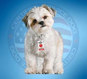 MEDICAL ALERT SERVICE DOG ID TAG KEY CHAIN / COLLAR TAG  FOR SERVICE ANIMAL ADA