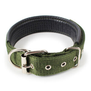 Dog Collar Padded Eyelet Nylon Metal Pet Puppy Cat Adjustable Collars Green UK