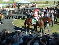 "SONGBIRD 2016 PHILADELPHIA PARX COTILLION STAKES HORSE RACING 8"" by 10"" PHOTO"