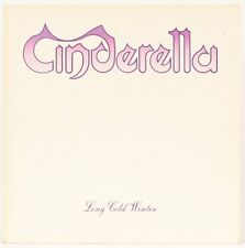 Long Cold Winter  Cinderella Vinyl Record