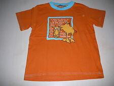 H & M tolles T-Shirt Gr. 104 orange mit witzigem Kamel Motiv !!