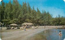 Veracruz Ver. Mexico~Mocambo Beach~Bathing Beauties~Vendor~1960s Postcard