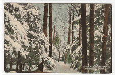 After A Snow Storm Winsted Connecticut 1910c postcard