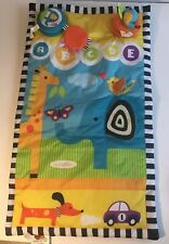 Infantiono Tummy Time Play Mat For Baby Clean Adorable