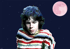 NICK DRAKE A3 SIZE ART POSTER PRINT LIMITED EDITION
