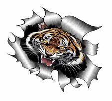 Gran diseño de aspecto de Metal RASGADO RASGADO & Roaring Bengal Tiger Diseño Pegatina De Coche