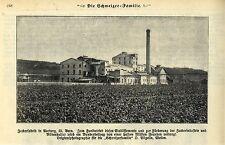 ZUCCHERIFICIO in AARBERG KT. Bern Svizzera registrazione storica 1909