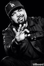 "17 NWA- Ice Cube Dr Dre Gangsta Rap Art 14""x21"" Poster"