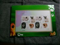 CHINA(2006)-DOMESTIC DOGS ISSUANCE OF THE SPECIAL,IMPERFORATE STAMPS, MNH