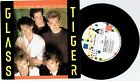 "GLASS TIGER - DON'T FORGET ME (WHEN I'M GONE) - 7"" 45 RECORD w PICT SLV - 1986"