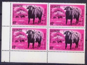 African Forest Buffalo, Animals, Guinea Rep 1964 MNH Blk Corner (O1n)