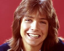 David Cassidy / The Partridge Family 8 x 10 / 8x10 GLOSSY Photo Picture IMAGE #3