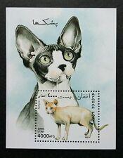 Afghanistan Cats 1996 Children Pet Animal Fauna (miniature sheet) MNH