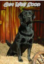 Labrador Retriever Get Well Soon Card - Starprint No 2