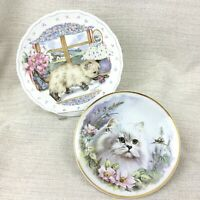 Persian Cat Collectors Plates Royal Albert China Cats Kittens Collectibles
