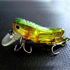 Grasshoppers Insect Popper Fishing Lure Topwater Bass Bait Fishing Lure NEW GH