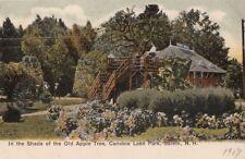 Postcard In Shade of Old Apple Tree Canobie Lake Park Salem NH