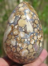 10.3OZ Natural Cobra Jasper Crystal Carving Art Egg
