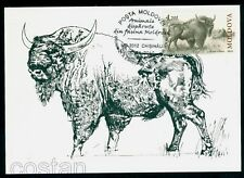 2010 Bison,Wisent, Prehistoric and extincted animals,Moldova,FDC Maxi card