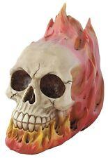 Totenkopf Schädel Totenköpfe Gothic Skull Dekoration Larp 16cm Mystik Deko NEU