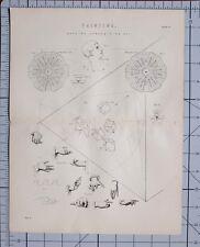 1868 Imprimé Peinture Silhouette Composition Prismatique Echelle Composé