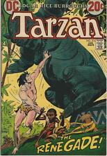 DC Comics Tarzan Of The Apes (1972 Series) # 216 FN/VF 7.0