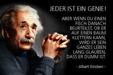 Albert Einstein Spruch 25 Blechschild Schild gewölbt Metal Tin Sign 20 x 30 cm