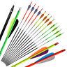 """12pcs 31"""" Archery Carbon Arrows Spine 350 Replaceable For Compound Recurve Bow"""