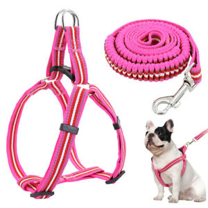 Adjustable Step-in Dog Harness & Leash Reflective Elastic Large Dog Walking Vest