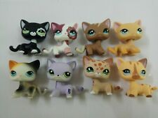 8pcs/Lot Littlest pet Shop rare LPS13  shorthair Cat Toy