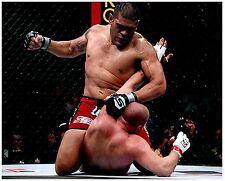 ANTONIO SILVA Signed Autographed UFC MMA 8X10 PIC. A
