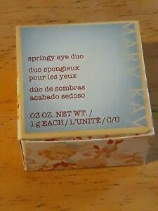 Mary Kay Springy Eye Duo - STONEWASHED    ***Discontinued***   NIB