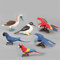 Simulation Papagei Vogelfigur Tiermodell Miniatur Dekoration Zubehör*