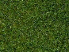 Noch 07092 Mélange D'herbe Master Herbes Vert clair 100 Grand H0 TT N Échelle 0