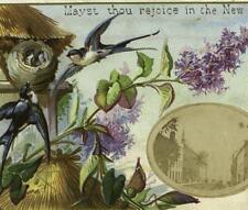 Castle Street Lisburn Ireland Applied Photo Swallow Nest Victorian New Year Card