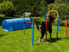 Dog Agility Set von Procyon, Hundesport, Hürde - Tunnel - Slalom - Jump Ring -