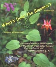 What's Doin' the Bloomin'? Revised Edition:A Pictorial Guide to Wildflowers of t