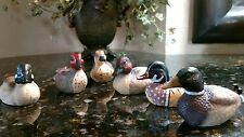 1980's Complete Set of Avon Collector's Ducks. Excellent Condition!