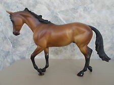 2001 Peter Stone Equilocity Basic But Bold Bay Thoroughbred