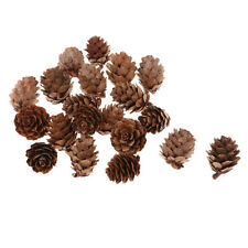 60Pcs Natural Real Pine Cones Decor Large for Wedding Table Centerpieces Lot