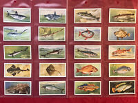 1935-PLAYER & SONS-SEA FISHES-SHARKS & MORE-FULL 50 CARD SET-TOBACCO CARDS-NRMNT
