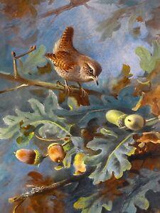 WREN by A. Thorburn bird oak acorns Tile Mural Kitchen Backsplash Marble Ceramic