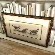 John Straw Sparrows limited edition framed bird watercolour painting print
