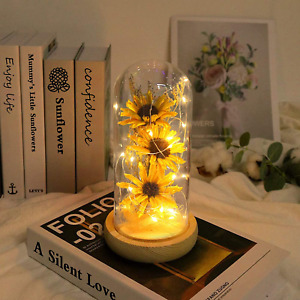 Artificial Sunflower in Glass Dome Sunflower Gifts for Women Sunflower Decor Enc