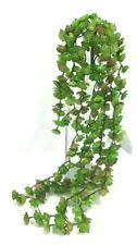 """Succulent Rosette Hanging Vine Bush~Light Green Tones~PVC/Artificial~19"""""""