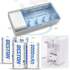 4xNi-MH 1.2V Rechargeable D size Batteries Replace Alkaline Battery PC1300 LR20