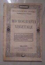 MICROGRAFIA VEGETALE FINE '800 PRIMI '900 SCIENZE BOTANICA