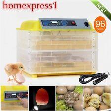 HOT 96 Digital Clear Egg Incubator Hatcher Automatic Turning Temperature Control